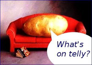 Couch potato image